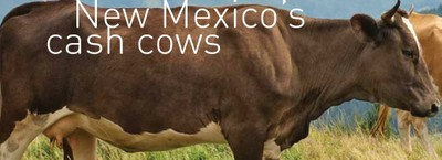 NM's Cash Cows
